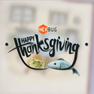 HEXBUG Thanksgiving: Cat & Robotic Mouse